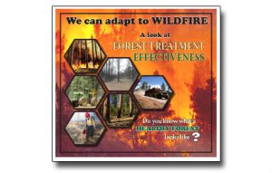 Read more about the article A Look at Forest Treatment (thinning trees/prescribed fire) Effectiveness