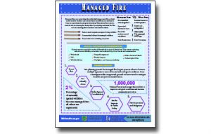 Harvesting Method Fact Sheet – Managed Fire